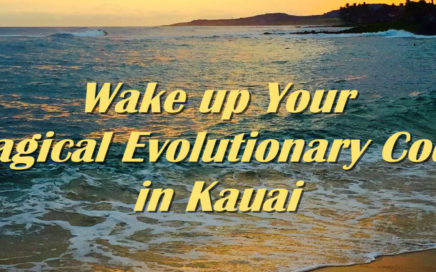 Inner resonance Workshop Kauai
